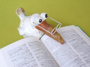 Nachhilfe bei der Lernzuflucht Hagen geben; lustiger Vogel mit Brille liest im Buch.