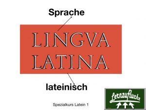 Latein lernen Lernzuflucht Nachhilfe Hagen